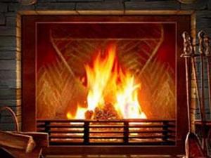 la viva fiamma di un caminetto a legna